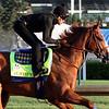 Justify Kentucky Derby Chad B. Harmon