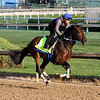 Combatant Kentucky Derby Chad B. Harmon