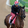 WONDER GADOT training at Churchill Downs