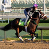 Bravazo Kentucky Derby Churchill Downs Chad B. Harmon