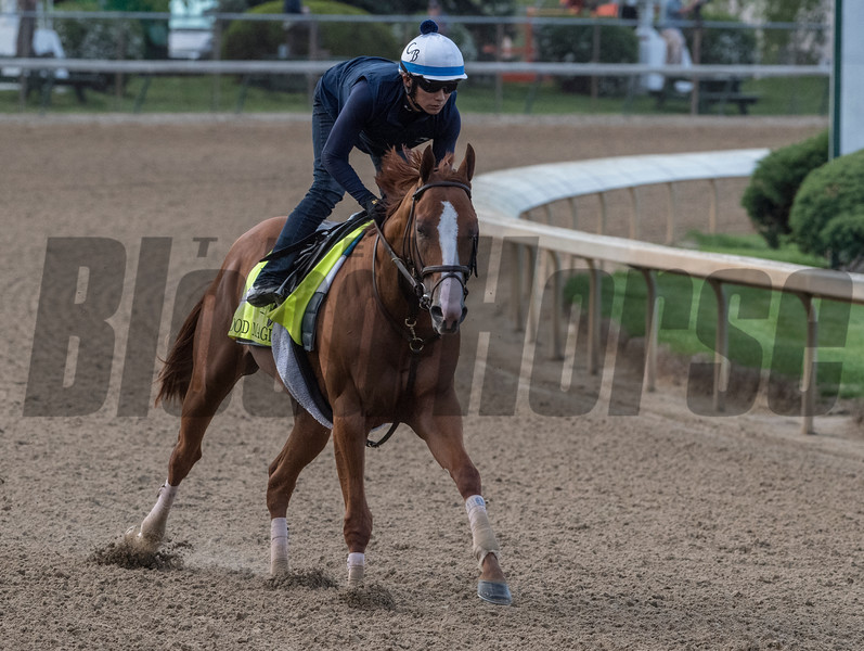 Good Magic gallops at Churchill Downs Wednesday May 2, 2018. Photo by Skip Dickstein