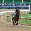 Lone Sailor Kentucky Derby Chad B. Harmon