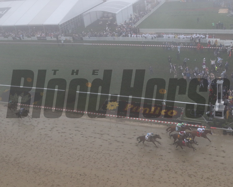 Preakness Stakes finish Chad B. Harmon