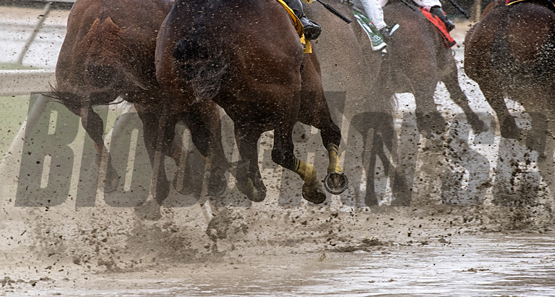 Lots of mud on the track on Preakness Day at Pimlico Race Course Saturday May 19, 2018.  Photo by Skip Dickstein