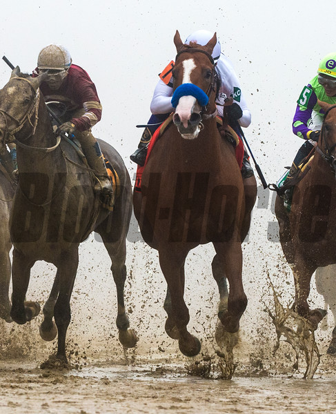 Justify with jockey Mike Smith wins the 143rd running of the Preakness Stakes. Photo by Skip Dickstein