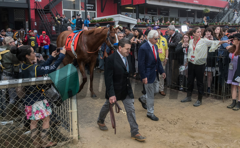 Justify with trainer Bob Baffert and assistant trainer Jim Barnes heads to the track for the 143rd running of the Preakness Stakes May 19, 2018 in Baltimore, MD  Photo by Skip Dickstein