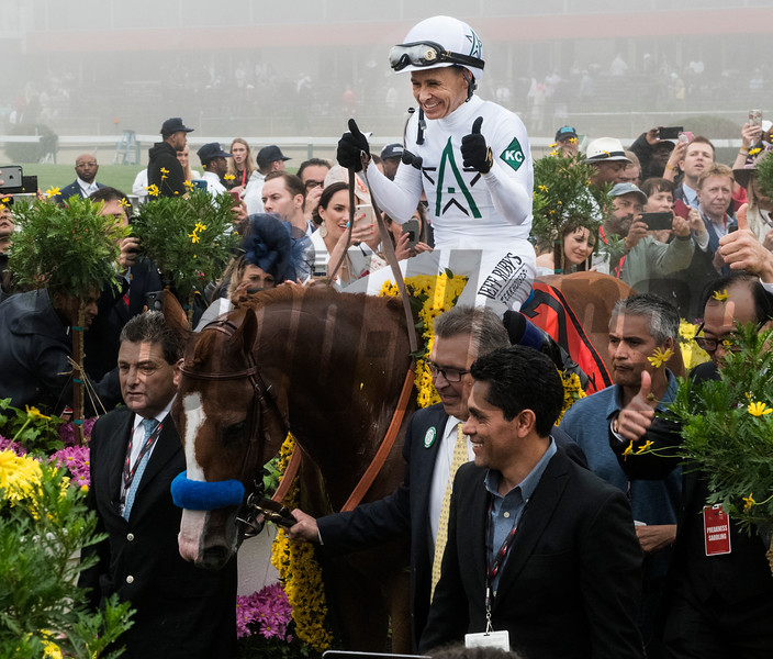Justify with jockey Mike Smith enters the winner's circle after winning the 143rd running of the Preakness Stakes. Photo by Skip Dickstein