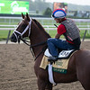 Spinoff - Morning - Belmont Park - 052919. Photo: Coglianese Photos