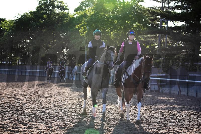 Tacitus - Belmont Park, June 4, 2019<br /> Coglianese Photos/Janet Garaguso