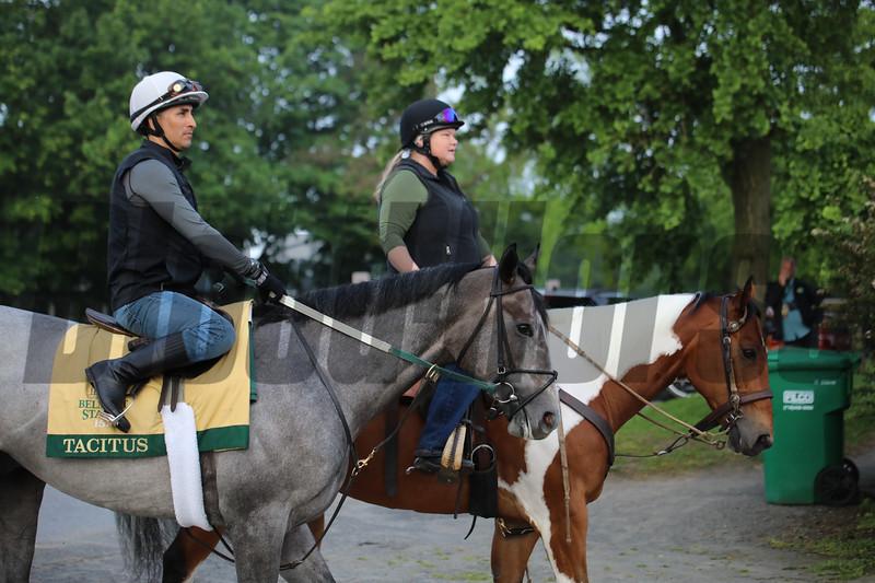 Tacitus - Belmont Park, June 6, 2019<br /> Coglianese Photos/Janet Garaguso