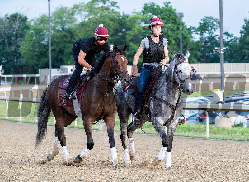 Travers winner Catholic Boy out for a gallop on the training track at Belmont Park Friday June 7, 2019 in Elmont, N.Y.  Photo by Skip Dickstein