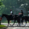 Horses trained by Ray Handel head to the main track for training Thursday June 6, 2019 at Belmont Park in Elmont, N.Y.  Photo by Skip Dickstein