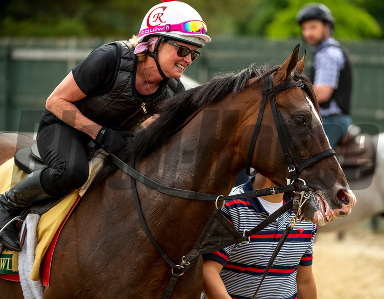War of Will with exercise rider Kim Carroll at the Belmont Race Course Wednesday June 5, 2019 in Elmont, N.Y. Photo by Skip Dickstein