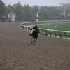 Master Fencer - Morning - Belmont Park - 060219. Photo: Coglianese Photos/Janet Garaguso