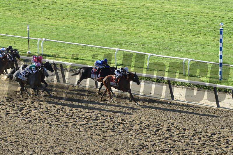 Sir Winston wins the 2019 Belmont Stakes<br /> Coglianese Photos/Janet Garaguso