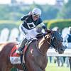 Sir Winston ridden by jockey Joel Rosario wins the 151st running of the Belmont Stakes held Saturday June 8, 2019 at Belmont Park in Elmont, N.Y.  Photo by Skip Dickstein