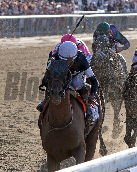 Sir Winston with Joel Rosario win the 151st Running of the Belmont Stakes (GI) at Belmont Park on June 8, 2019. Photo By: Chad B. Harmon
