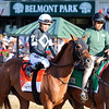 Sir Winston with Joel Rosario in the post parade for the 151st Running of the Belmont Stakes (GI) at Belmont Park on June 8, 2019. Photo By: Chad B. Harmon