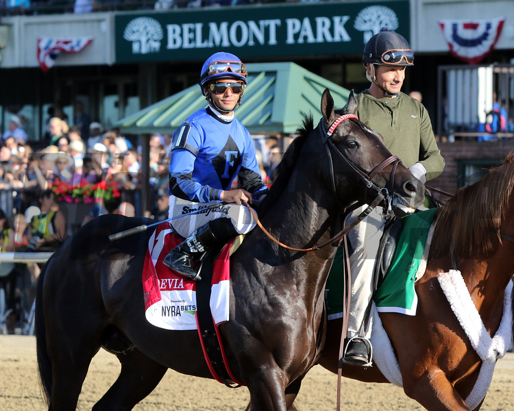 Joevia with Jose Lezcano in the post parade for the 151st Running of the Belmont Stakes (GI) at Belmont Park on June 8, 2019. Photo By: Chad B. Harmon