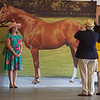 Taking photos with Secretariat on June<br /> 8, 2019 in Elmont,  NY.