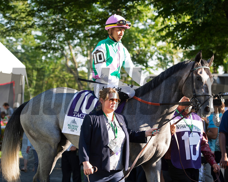 Tacitus in the Belmont Stakes (G1) at Belmont<br /> on June 8, 2019 in Elmont,  NY.