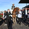Sir Winston wins the 2019 Belmont Stakes<br /> Coglianese Photos