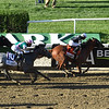 Sir Winston wins the 2019 Belmont Stakes<br /> Coglianese Photos/Janet Garaguso