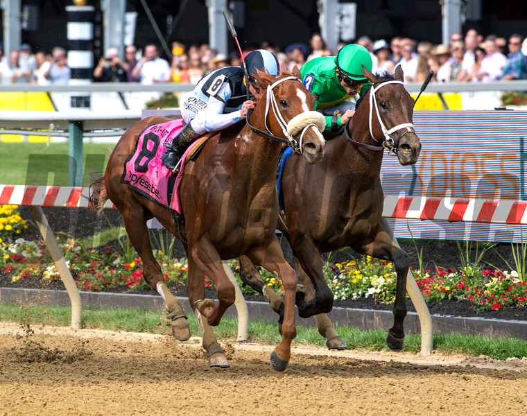 Point of Honor with jockey Javier Castellano, left out duels Ulele with jockey Joel Rosario to the win in the 95th running of The Black-Eyed Susan Stakes Friday May 17, 2019 at Pimlico Race Track in Baltimore, MD.  This was Castellano's win on the day.  Photo by Skip Dickstein.