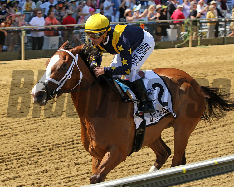 Covfefe sets a track record in the 34th Running of The Miss Preakness Stakes (GIII) at Pimlico on May 17, 2019. Photo By: Chad B. Harmon