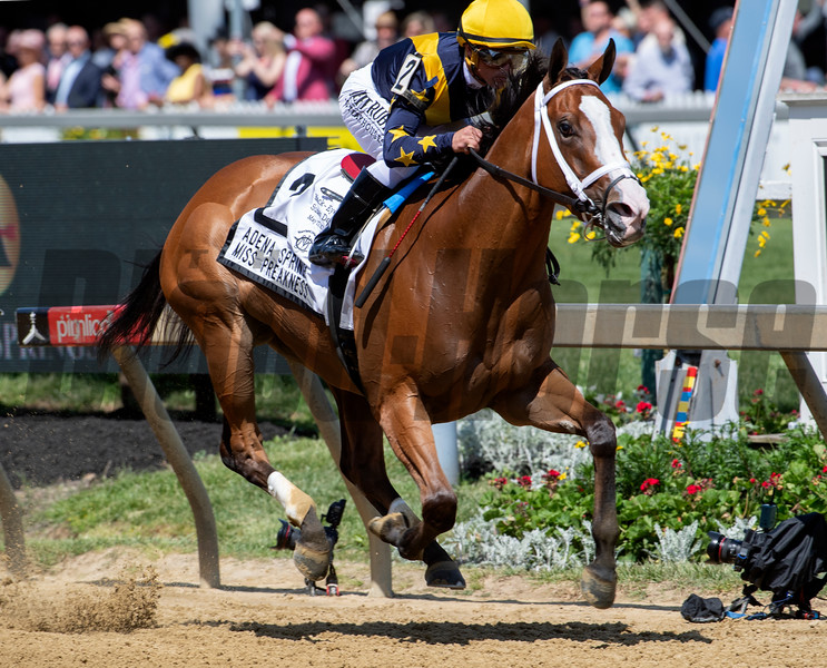 Covfefe ridden by jockey Javier Castellano flies to the wire in the 34th running of the Adena Springs' Miss Preakness Stakes(GIII) Friday May 17, 2019 at Pimlico Race Track in Baltimore, MD.  Photo by Skip Dickstein.