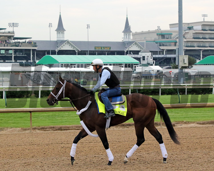 Haikal on the track at Churchill Downs on April 30, 2019. Photo By: Chad B. Harmon