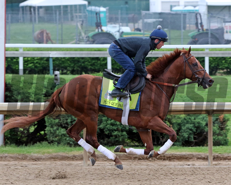 Plus Que Parfait on the track at Churchill Downs on April 30, 2019. Photo By: Chad B. Harmon