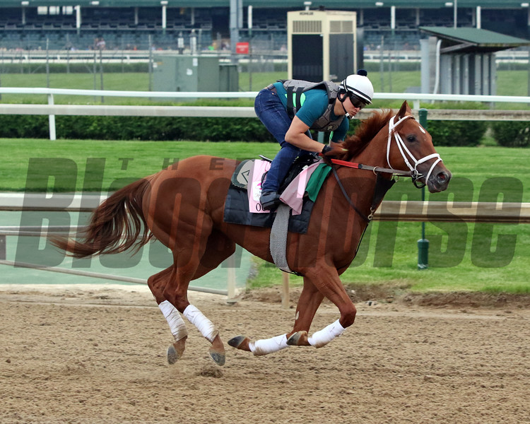 Out For A Spin on the track at Churchill Downs on April 30, 2019. Photo By: Chad B. Harmon