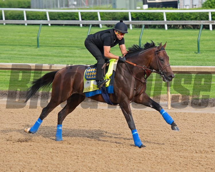 Game Winner with Humberto Gomez. Morning scenes at Churchill Downs during Derby week 2019  April 30, 2019 in Louisville,  Ky.