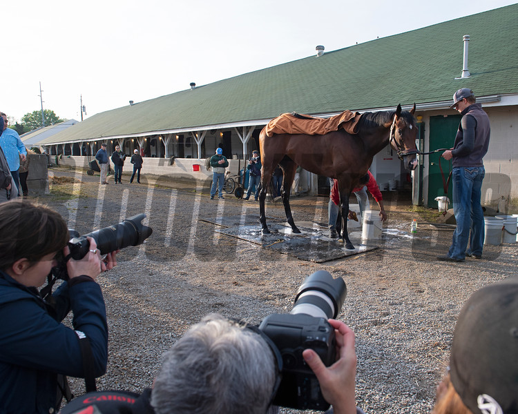 Omaha Beach gets a bath being held by Taylor Cambra as media photograph. Morning scenes at Churchill Downs during Derby week 2019  April 29, 2019 in Louisville,  Ky.