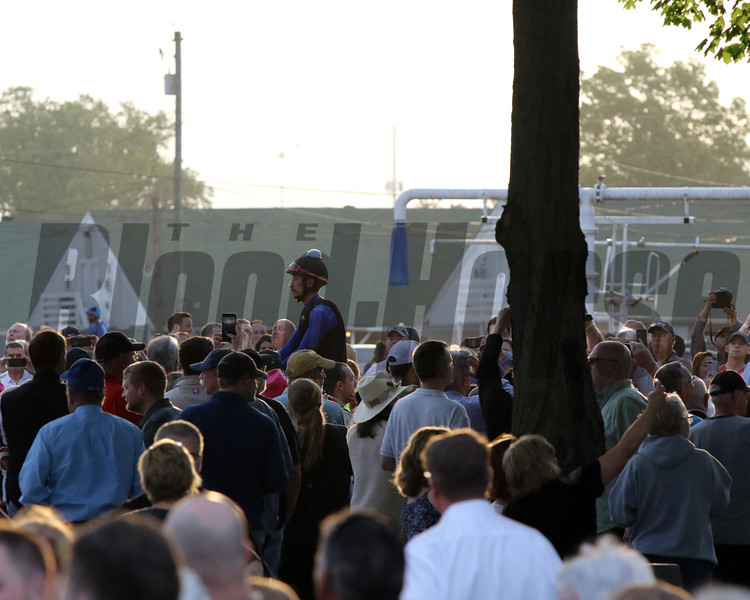 Tax heading to the track with only his exercise rider visible with the crowd on the backside at Churchill Downs on May 1, 2019. Photo By: Chad B. Harmon