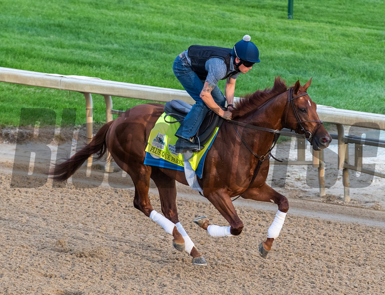 Plus Que Parfait out for a gallop on the main track at Churchill Downs Wednesday May 1, 2019 in Louisville, KY.<br /> Photo by Skip Dickstein