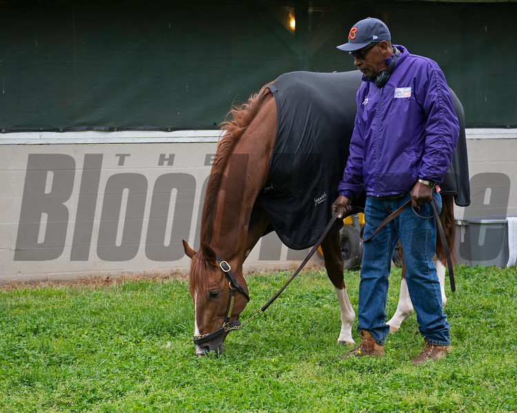 Code of Honor with Julio Gondola. Morning scenes at Churchill Downs during Derby week, April 28, 2019 in Louisville, Ky. Photo: Anne M. Eberhardt