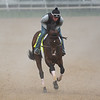 Omaha Beach galloping