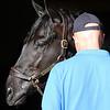 Win Win Win - Morning - Fair Hill - 042119. Photo: Chad B. Harmon