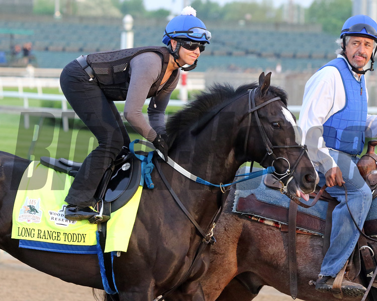 Long Range Toddy on the track at Churchill Downs on May 1, 2019. Photo By: Chad B. Harmon