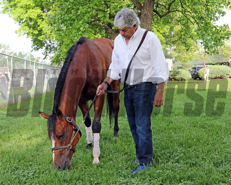 Trainer Gustavo Delgado with Bodexpress at Churchill Downs on May 2, 2019. Photo By: Chad B. Harmon