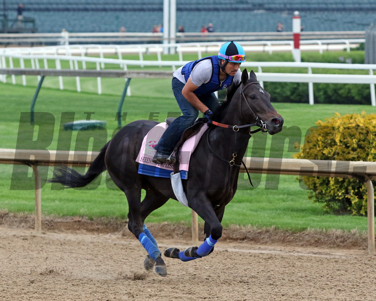 Serengeti Empress on the track at Churchill Downs on April 30, 2019. Photo By: Chad B. Harmon