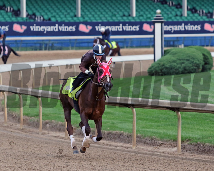 Master Fencer with Julien Leparoux on the track at Churchill Downs on May 1, 2019. Photo By: Chad B. Harmon