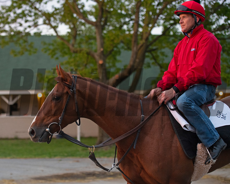Code of Honor. Morning scenes at Churchill Downs during Derby week 2019  April 27, 2019 in Louisville,  Ky. Photo: Anne M. Eberhardt