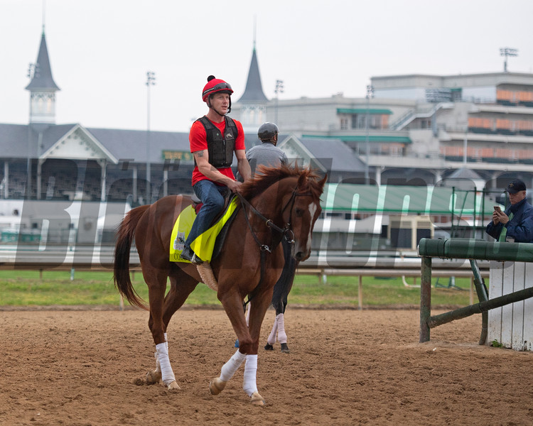 Code of Honor. Morning scenes at Churchill Downs during Derby week 2019  April 30, 2019 in Louisville,  Ky.