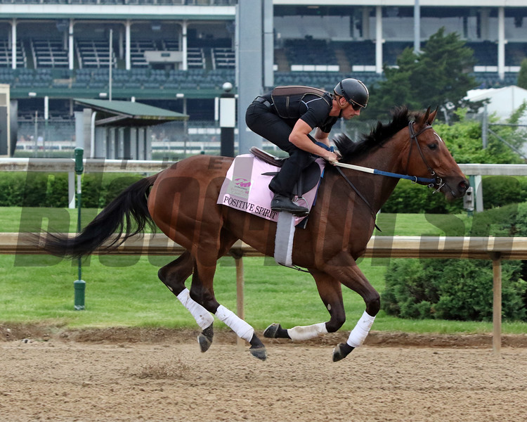 Positive Spirit on the track at Churchill Downs on April 30, 2019. Photo By: Chad B. Harmon