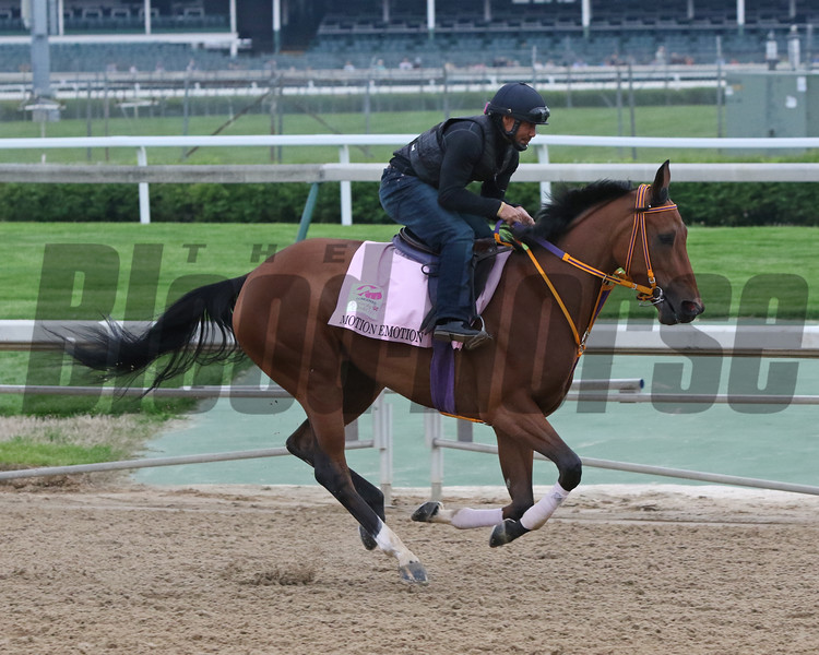 Motion Emotion on the track at Churchill Downs on April 30, 2019. Photo By: Chad B. Harmon