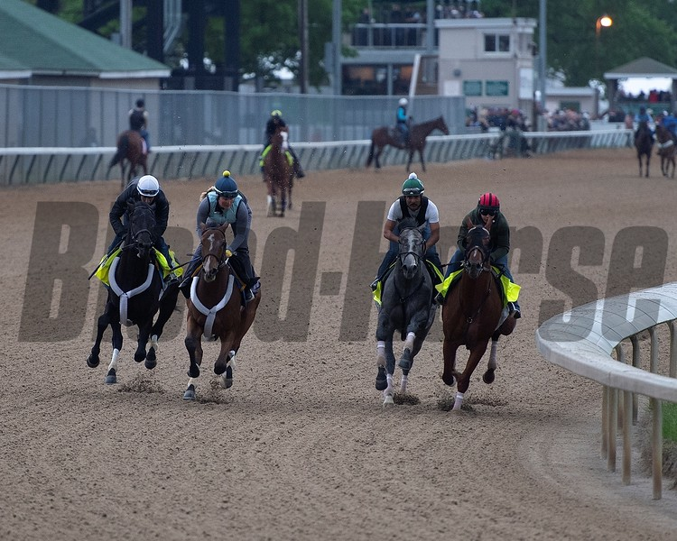 (R-L): Country House, Tacitus, Workmate Souper Courage, and Win Win Win. Morning scenes at Churchill Downs during Derby week, April 28, 2019 in Louisville, Ky. Photo: Anne M. Eberhardt