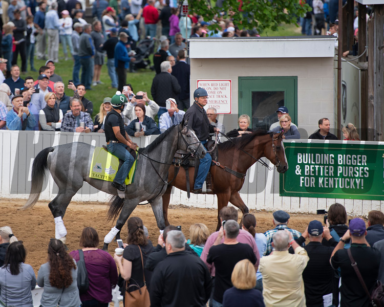Tacitus, Morning scenes at Churchill Downs during Derby week 2019  April 30, 2019 in Louisville,  Ky.